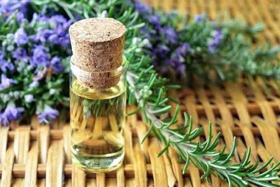 Eau De Parfum – Mọi Phụ Nữ Trưởng Thành Đều Muốn Sở Hữu